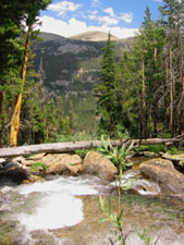 Lyell Canyon